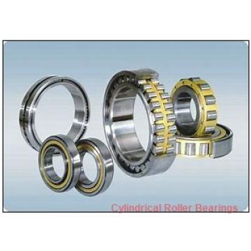 120 mm x 215 mm x 40 mm  NTN NU 224 G1 Cylindrical Roller Bearings