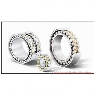 300 mm x 380 mm x 80 mm  INA SL014860 Cylindrical Roller Bearings