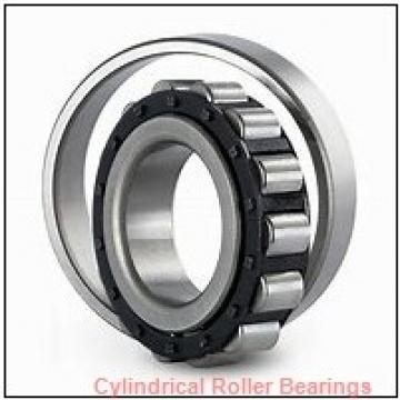 Link-Belt MU1205UM Cylindrical Roller Bearings